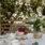 Lördagstankar & midsommartårta med rabarber