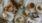 Glutenfria scones & loppisfynd på landet
